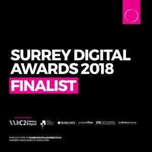 Surrey Digital Awards - best Small Business Website