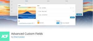 Advanced Custom Fields